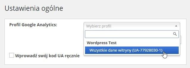 Wybór profilu Google Analytics