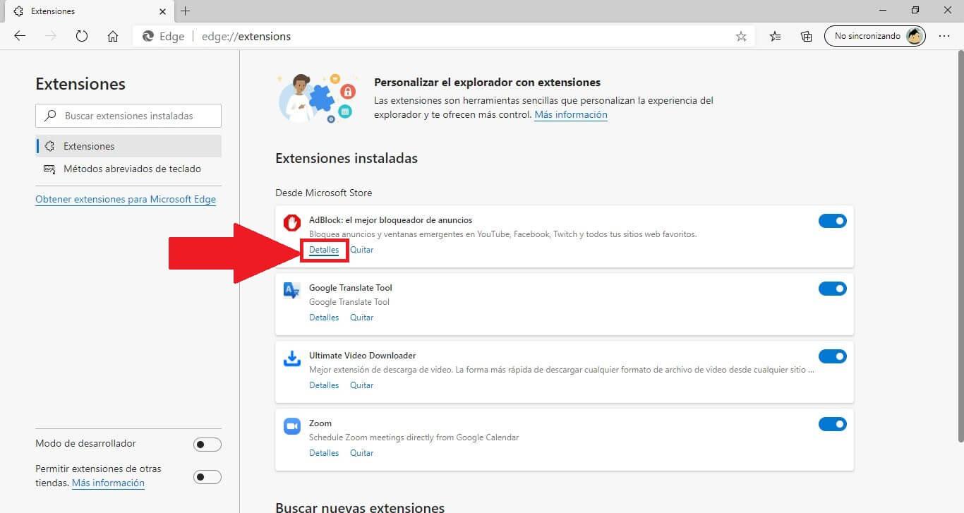 activar las extensiones en el navegador Web Microsoft edge
