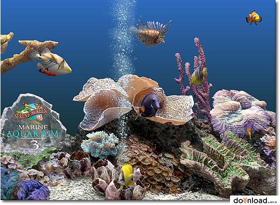 SereneScreen Marine Aquarium - Neowin